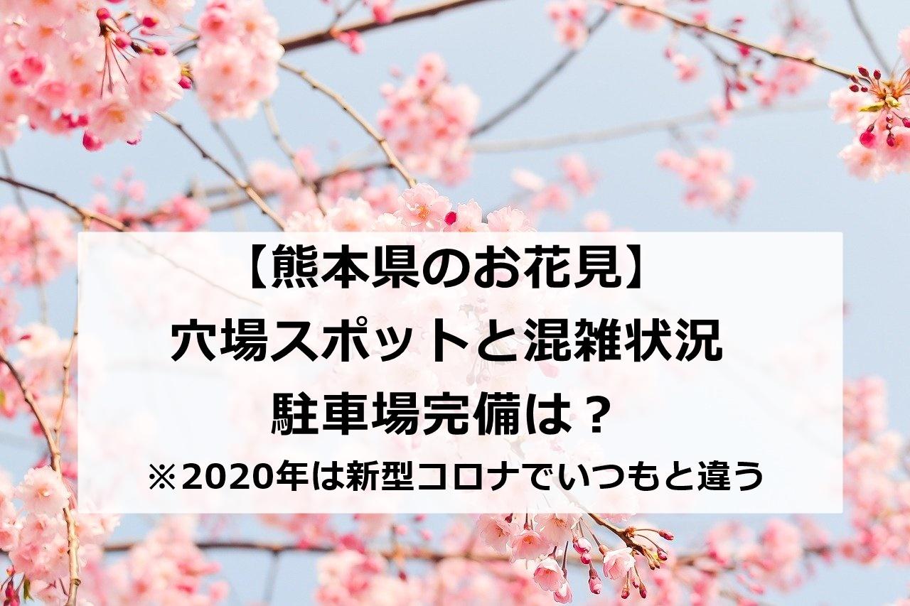 【熊本県】お花見おすすめ穴場スポット 混雑状況と駐車場の完備は?