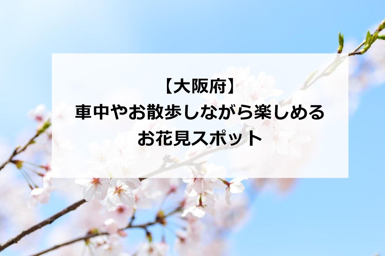 【大阪府】お花見を車中やお散歩で楽しみむ&人気スポットの混雑状況や場所取り
