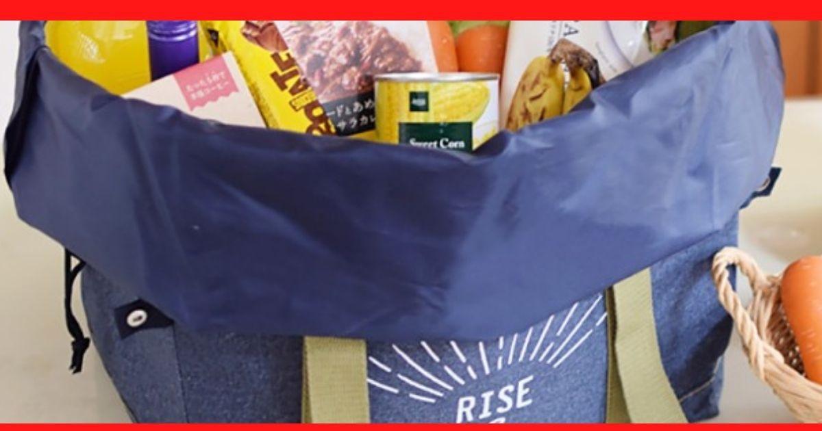 【全国レジ袋有料化】エコバックのおしゃれや機能性に優れたもの&男性向けおすすめ3選